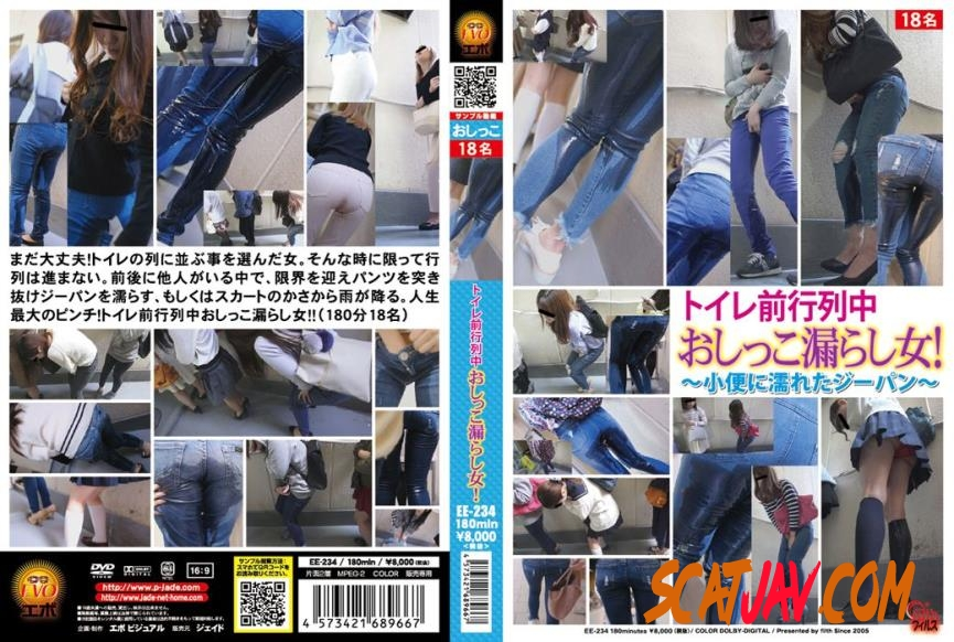 EE-234 Piss in Jeans Accident on Public ~小便に濡れたジーパン~ (090.0674_EE-234 | 2018 | FullHD) (1.79 GB)