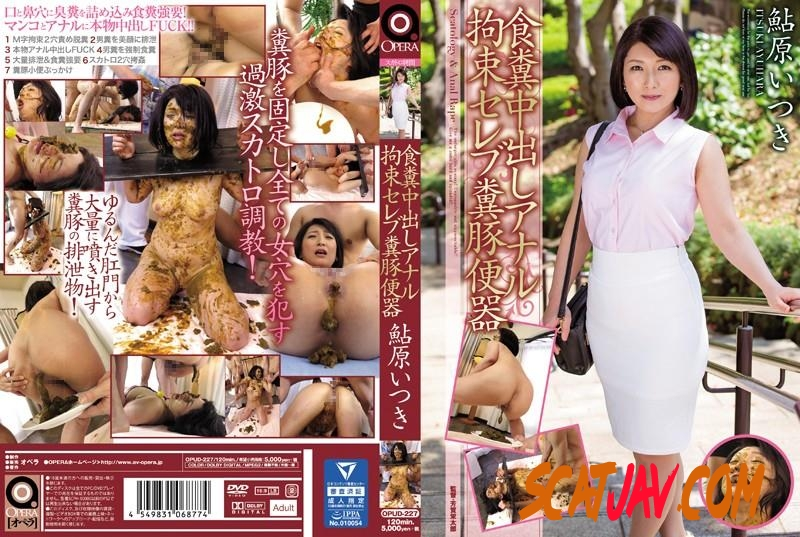OPUD-227 Coprophagy restraint scat rape humilliation celebrity shit on human toilet Ayuhara Itsuki (371.1603_OPUD-227 | 2018 | FullHD) (3.66 GB)