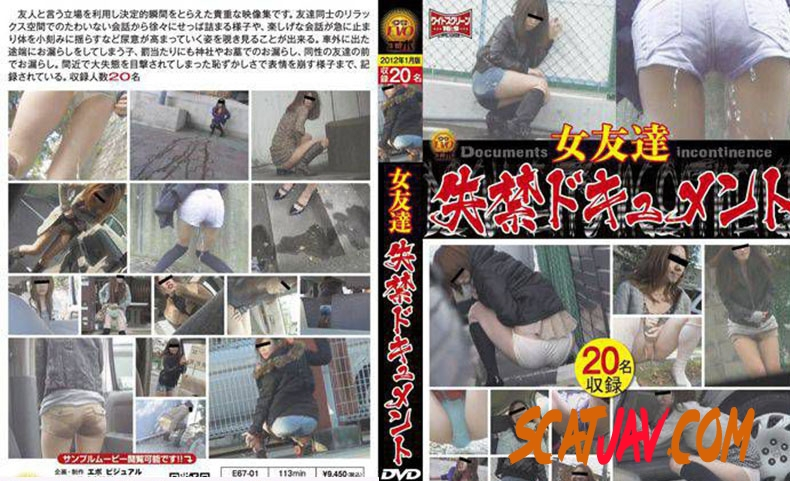 E67-01 女友達 失禁ドキュメント Friend Long Fed in the Toilet (3.1583_E67-01 | 2019 | SD) (688 MB)